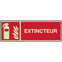 Panneau photoluminescent horizontal extincteur