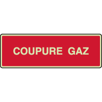 Panneau photoluminescent horizontal coupure gaz