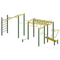 Circuit Cross Fit Street Workout Body Station